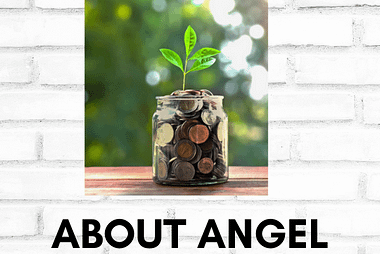 Interested in Angel Investing